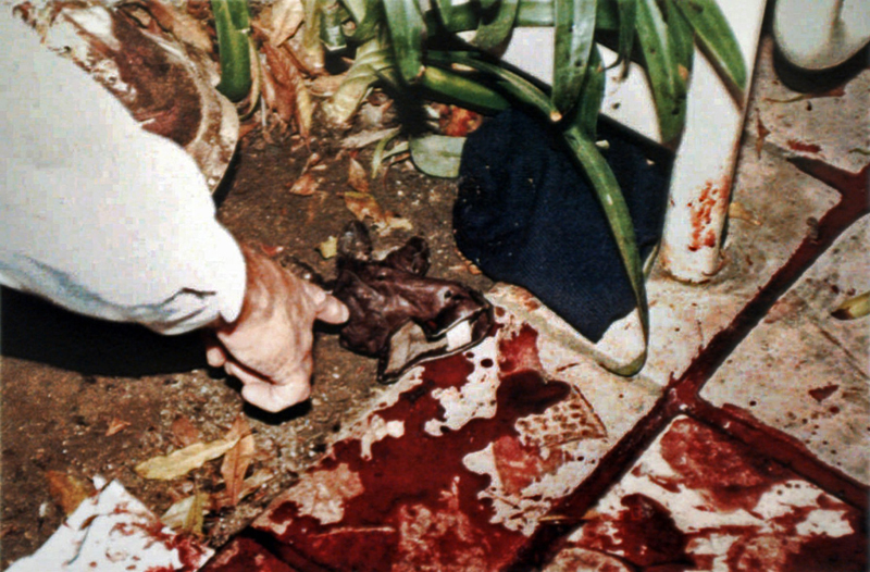 The truth about the physical evidence in the O.J. Simpson trial – Part II